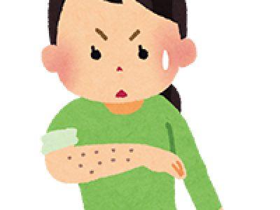 毛深さは子供に遺伝するのか(我が子の場合)